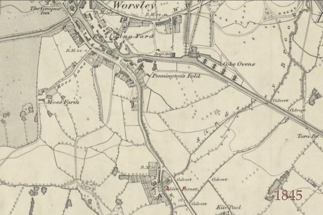 1845 - Alderforest