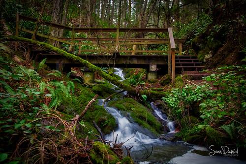 Bridge over Troubled Water (Landscape)   by Sean Daniel