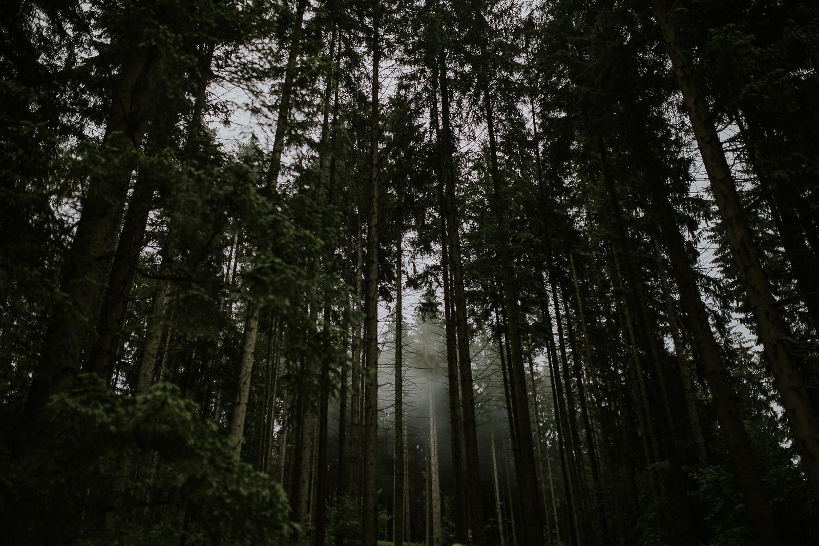 Iuli_Rox-558