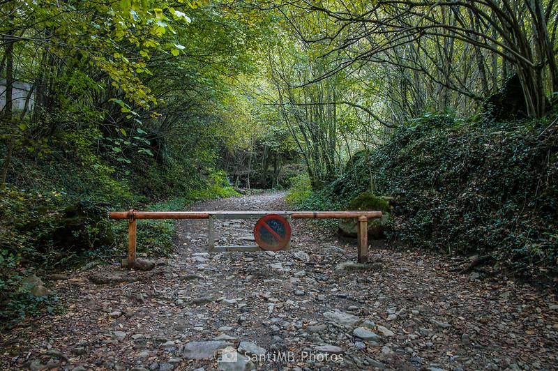 Final del camino forestal de les Olletes