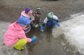 scooping water   by lyn.schmucker