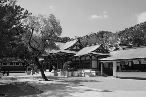 04-04-2019 Nishinomiya, Hyogo pref (44)