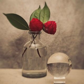 Camellias with a Crystal Glass Orb
