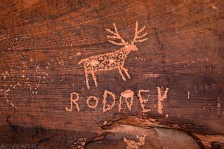 Rodney | by IntrepidXJ