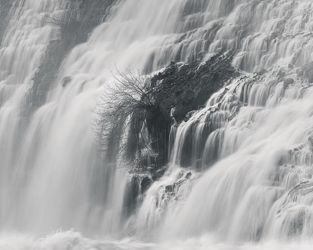 Embrace the Flow