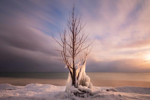 tree winter ice cold freezing lakeontario pickering ontario canada longexposure neutraldensity clouds sky shore sunset
