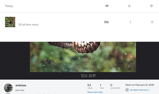 flickr viewcount inconsistencies | by kuuan