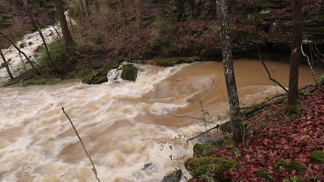 Ament resurgence at flood stage, Putnam County, Tennessee