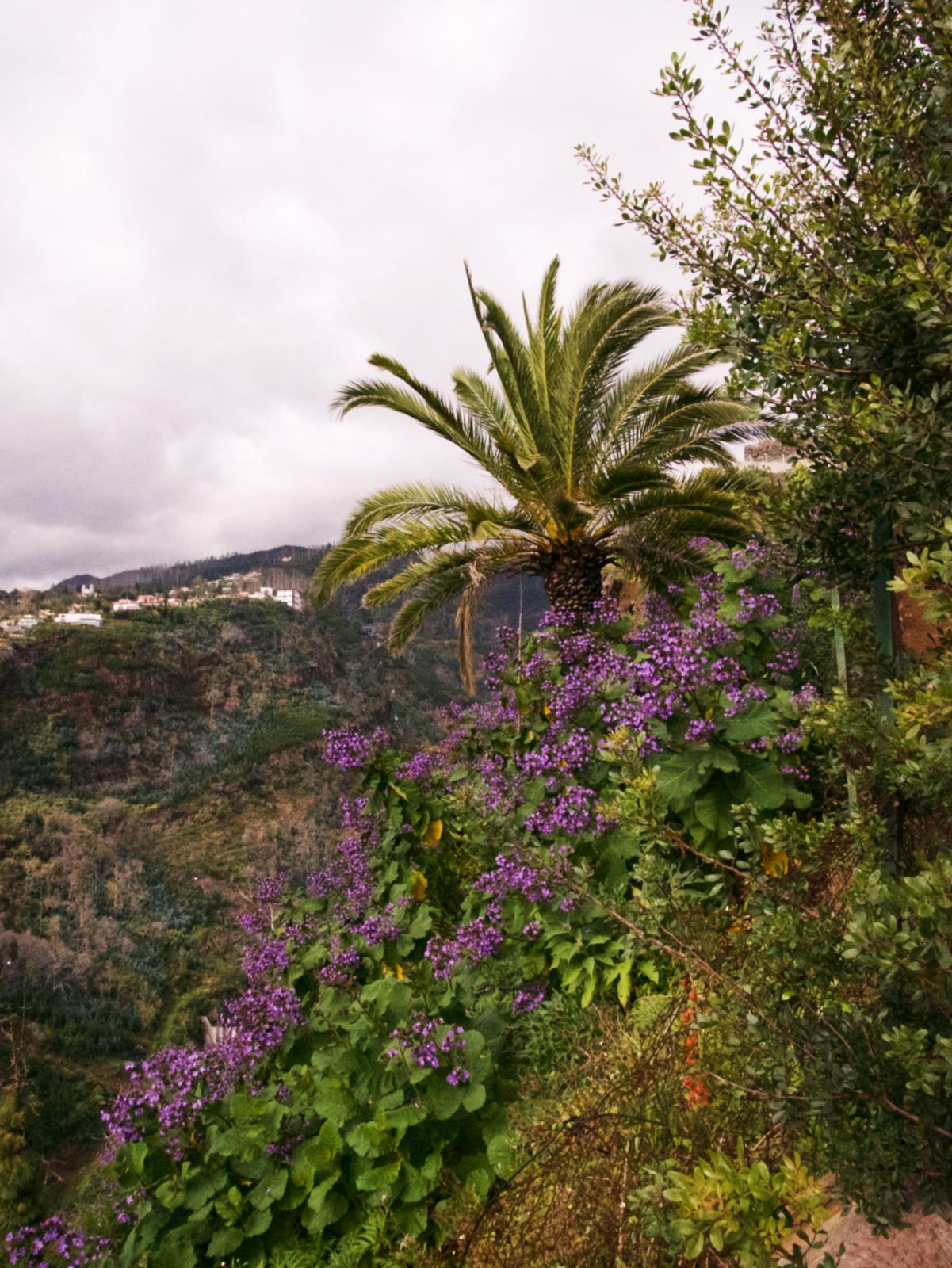 092-Madeira