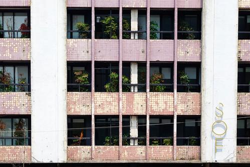 SOF Hotel 植光花園酒店