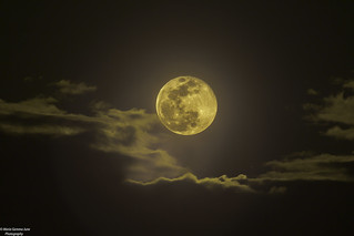 Biggest Full Moon Supermoon of 2019   by Maria Gemma - A Passionate Photographer