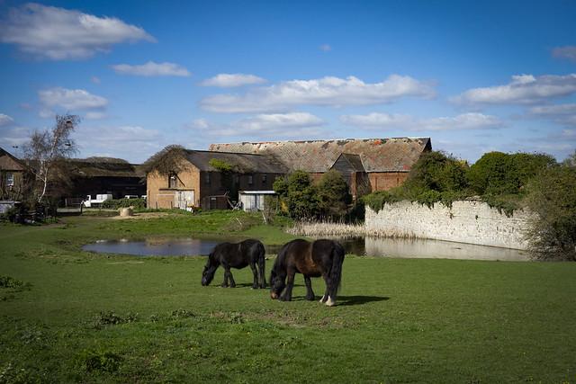 Howbury Moat, Slade Green
