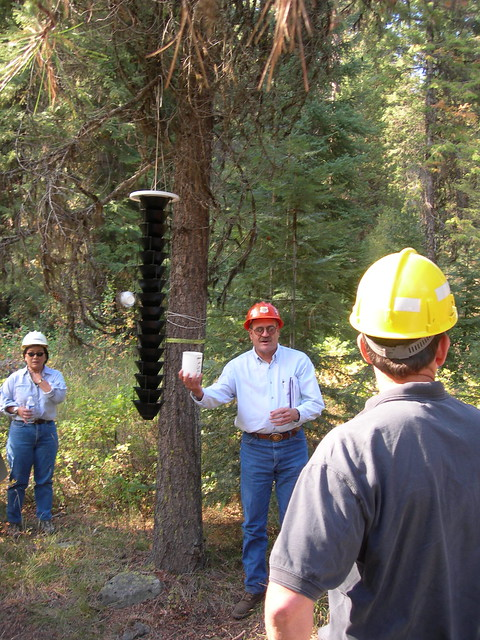 2006. Don Scott - entomologist with the Blue Mountains Forest Insect and Disease Service Center. Washington Office review of the R6 Forest Health Protection program. Field trip. Enterprise, Oregon.