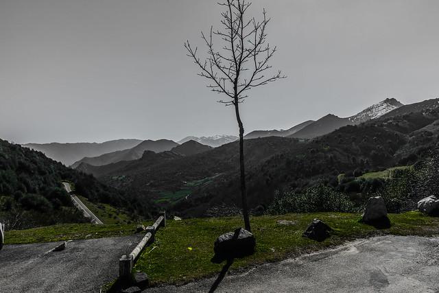 Puerto de San Lorenzo - Somiedo - Asturias - Spain
