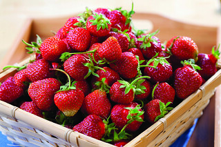 All About Strawberries | by Farm Fresh To You -