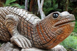 Gecko de Nouvelle-Zélande   by philippeguillot21