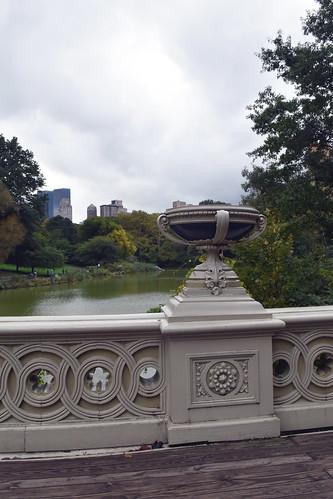 Central Park (New York, NY)   by kelly bone