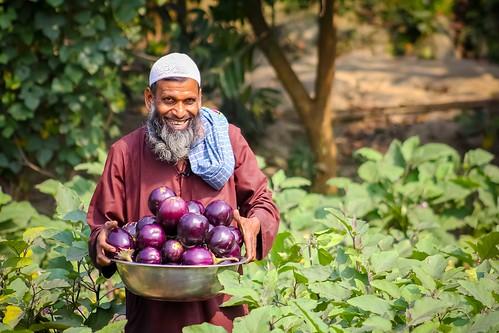 Bt brinjal farmer Khalilur Rahman from Bangladesh _ Arif