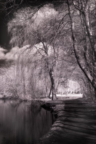 IR landscape | by Metalhund