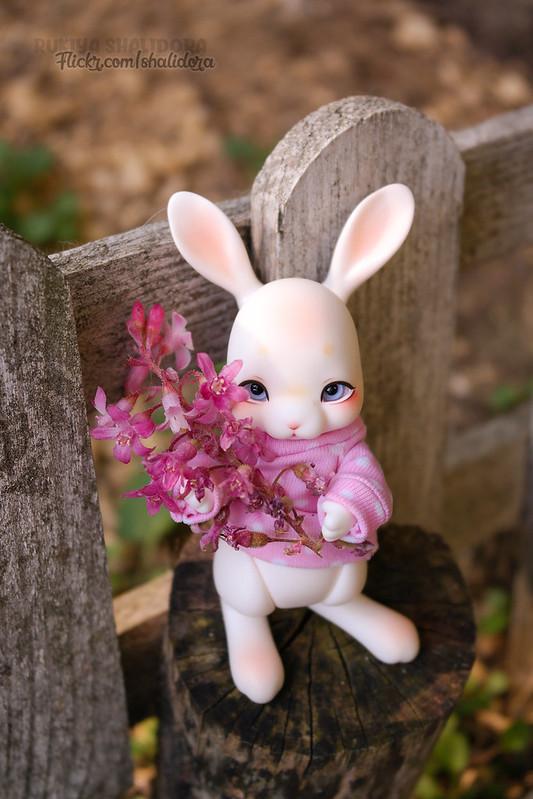 Rukiya's Dolls MAJ 25/07 ~Arrivée Cocoriang Poi Limited~ p33 - Page 33 46683366465_4ded3fd355_c