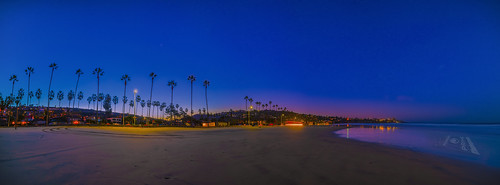 landscape water nature sunrise beach ocean palm palmtree trees shore horizon waves sand panorama panoramic sky lights glow longexposure pacific lajolla sandiego