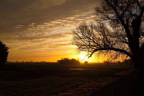 sunrise wall fields trees sky suffolk nikon d750 fx