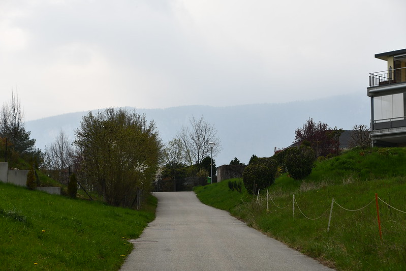 Way to estate 11.04.2019