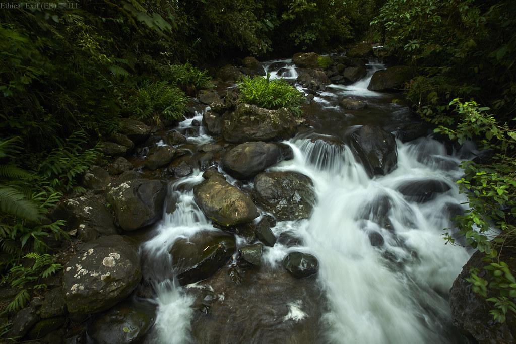 Cauca Valley stream