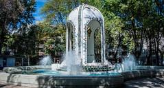 2018 - Mexico -  Mexico City - La fuente de la plaza Popocatépetl