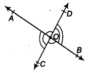 Lines and Angles Class 9 Notes Maths Chapter 4 12