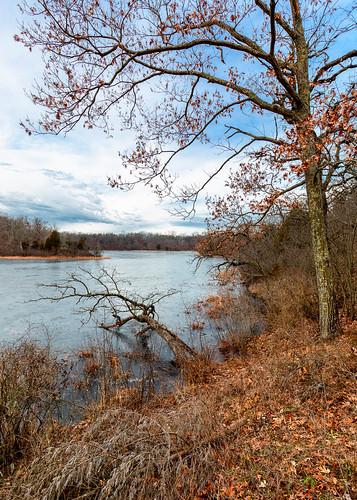 nature trees lake rainbowspringslake wisconsin winter midest canoneos5dmarkiii canonef1635mmf4lis