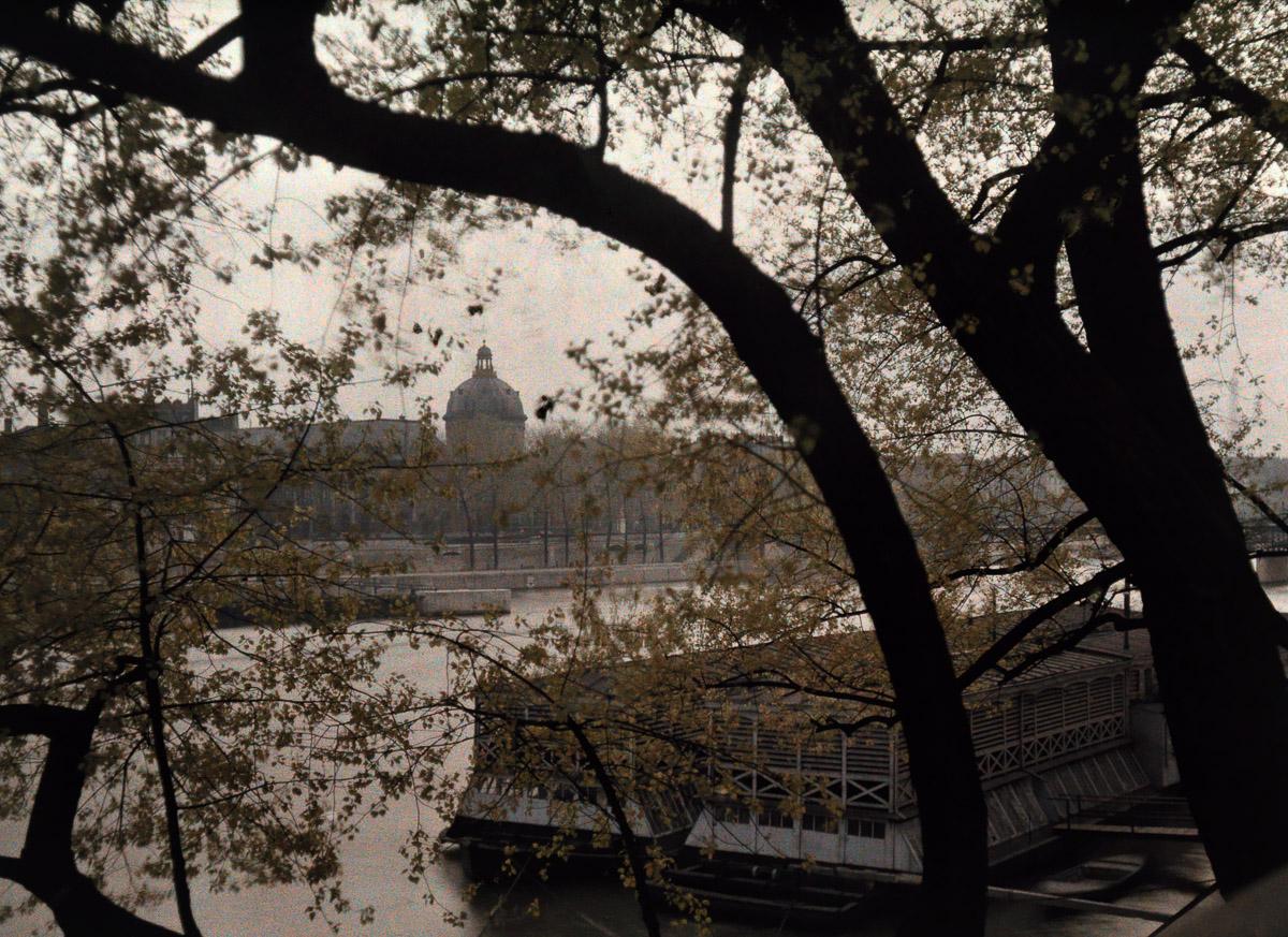 Вид сквозь деревья на противоположный берег Сены