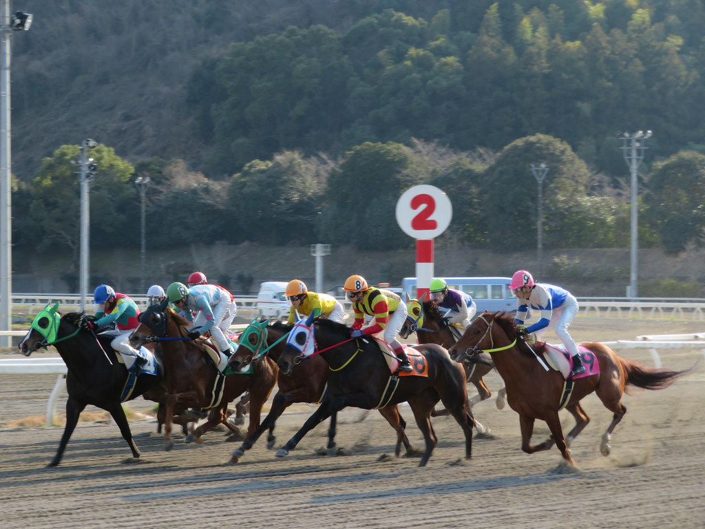 ライブ 高知 競馬 楽天競馬:地方競馬全場のオッズ・予想・投票・レース映像を提供