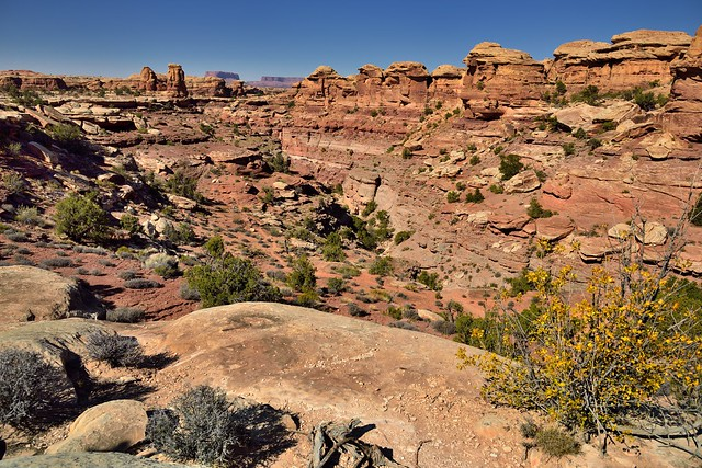 Big Spring Canyon and a Trail Yet to Be Hiked (Canyonlands National Park)