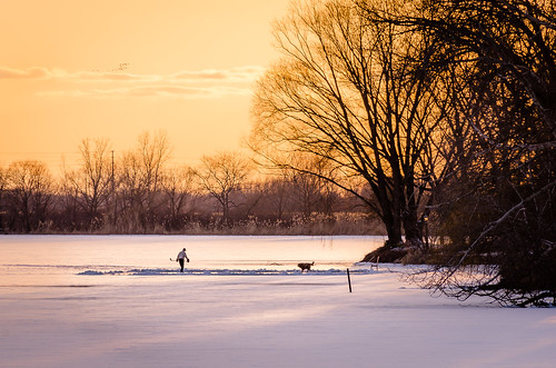 2019 canada february ontario rivercanard snow winter frozen hockey ice sunset
