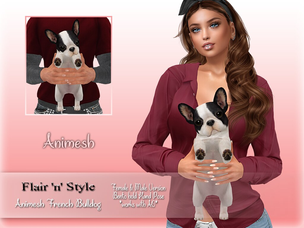 {Flair 'n' Style} Animesh French Bulldog