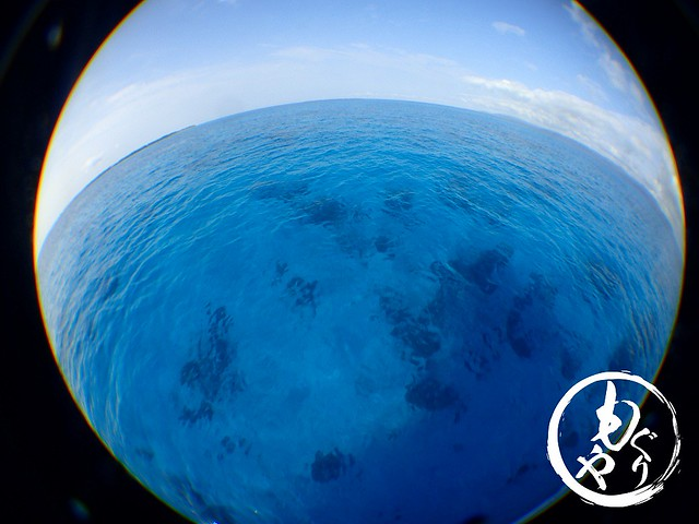 抜群の透明度!!まるで8月の黒島。。。