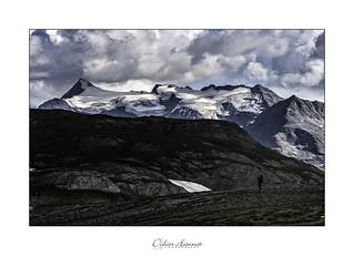 La nature est un géant #dh797 | by Didier Hannot Photography