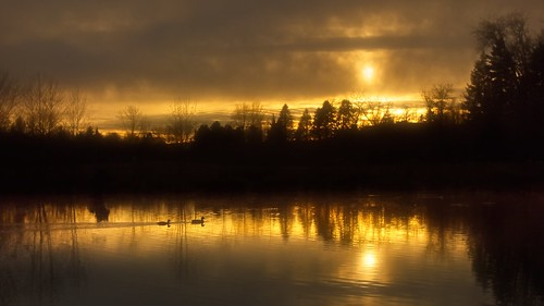 jchoate on1pics sunset duck duckpond pond water reflection tualatinoregon brownsferrypark portland
