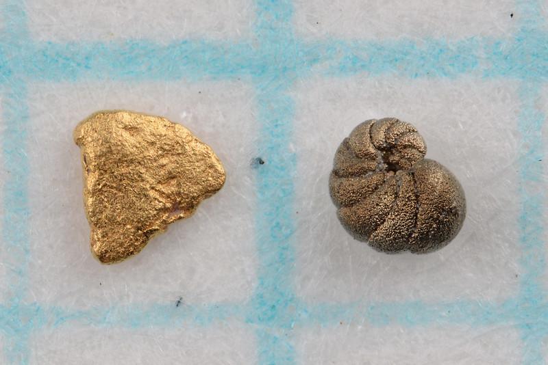 砂金(左)と化石(右)