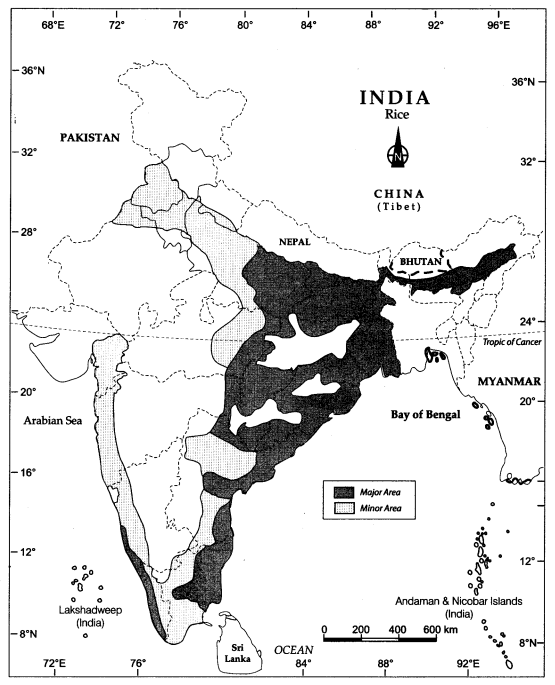 Class 10 Geography Map Work Chapter 4 Agriculture 2