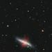 M82 The Cigar Galaxy by Peter Goodhew