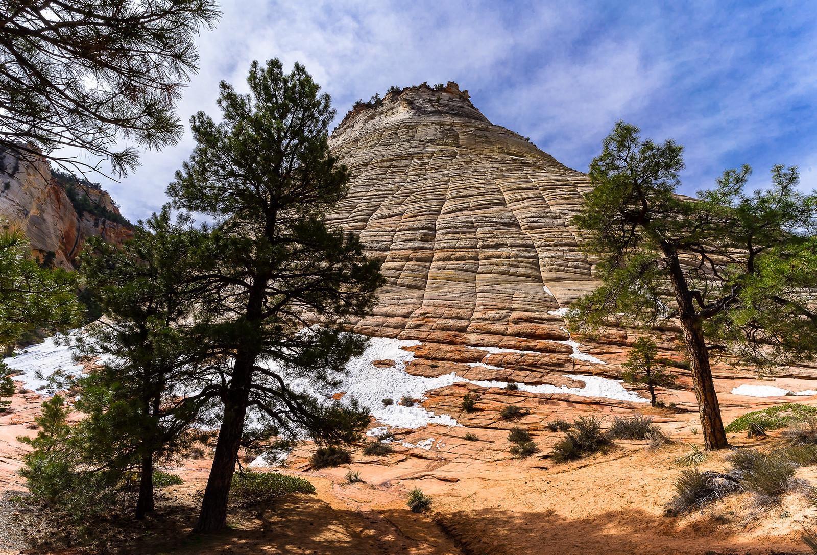 Zion Canyon, Utah, USA  (ajout +2) 47455458682_164f14bb9d_h