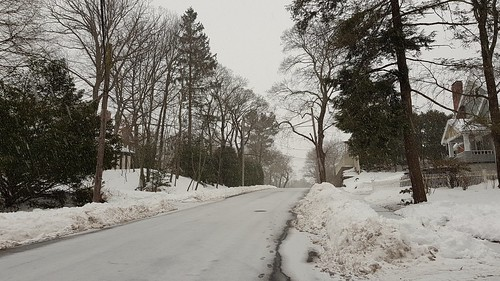 Snow into sleet | by Lorianne DiSabato