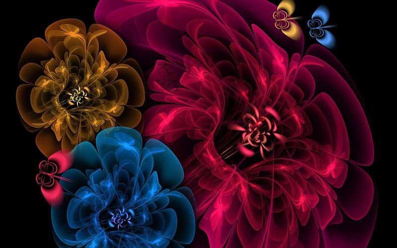 Обои цветы, пелена, фон, темный картинки на рабочий стол, фото скачать бесплатно