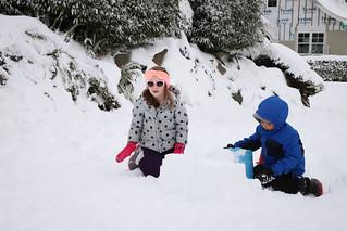 20190209 snowzilla-24   by schnell foto
