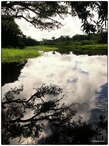 suriname reflections minolta water nature landscape southamerica clouds