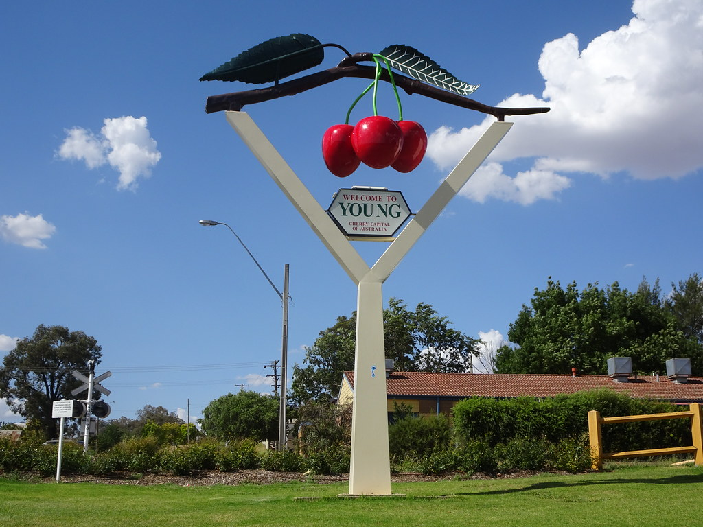Young. Cherry Capital of Australia. the big cherry.