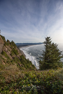 Manzanita Beach | by niseag03