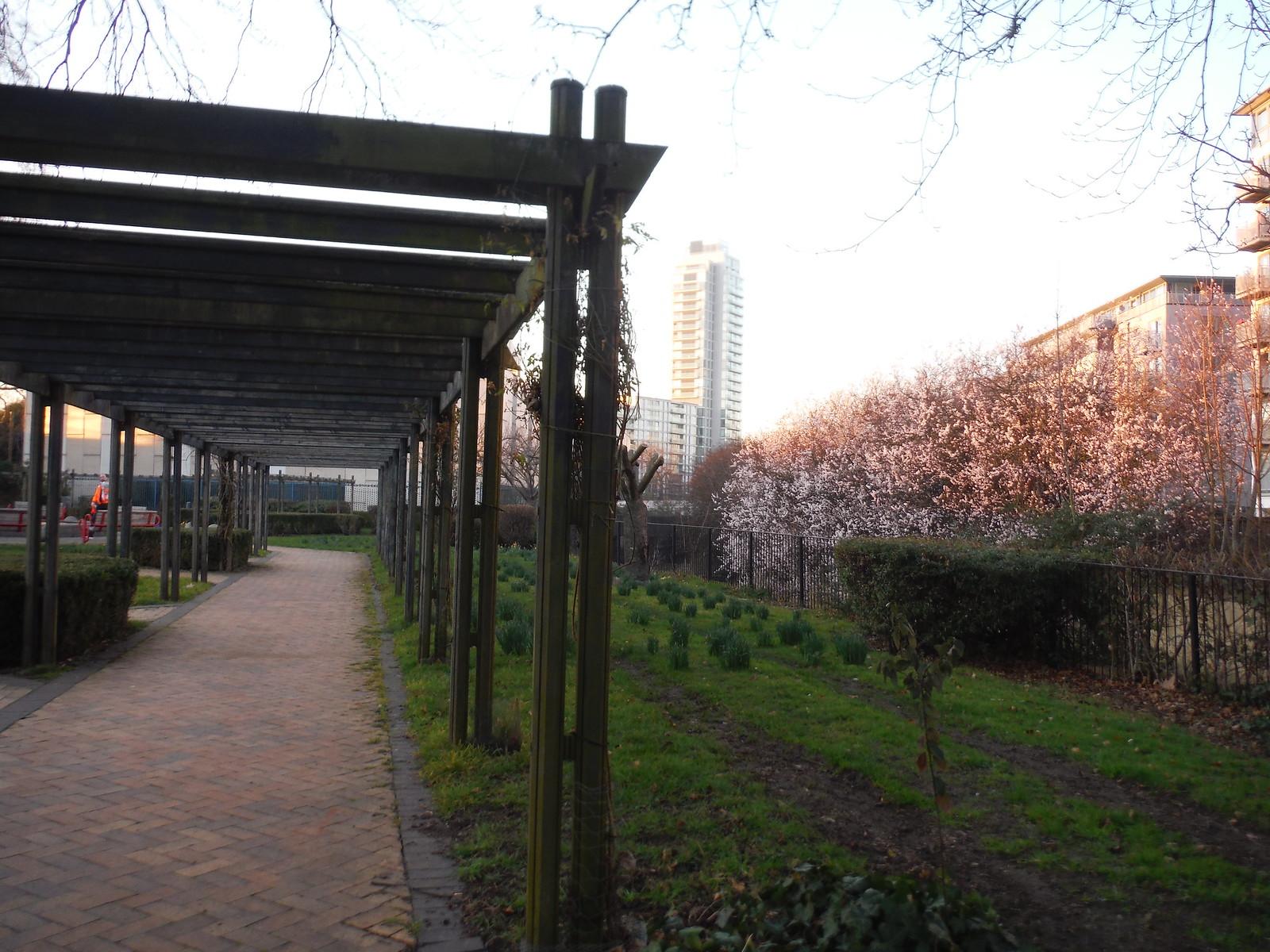 Pergola, Brookmill Park SWC Short Walk 36 - Waterlink Way (Lower Sydenham to Greenwich)